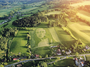 mona lisa mowed into field