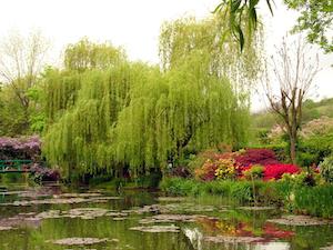 private garden sightseers at Monet garden