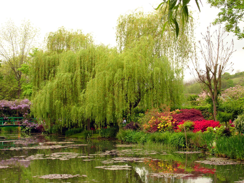 private garden sightseers at Monet garden
