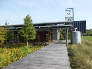 landscape design with sustainability in mind