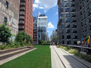 The high line urban park in New York city