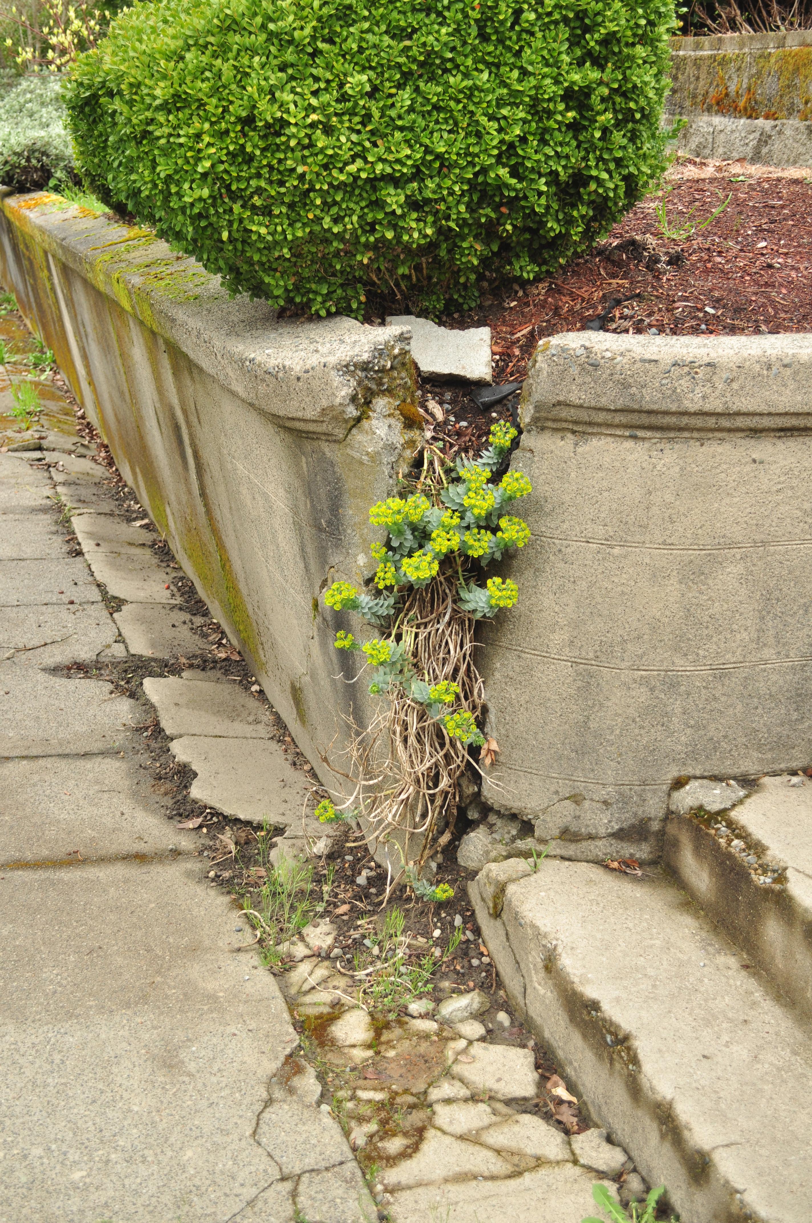 Retaining Wall Failure 101 And How To Fix The Issues