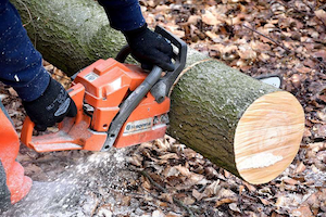 cutting-wood-chainsaw
