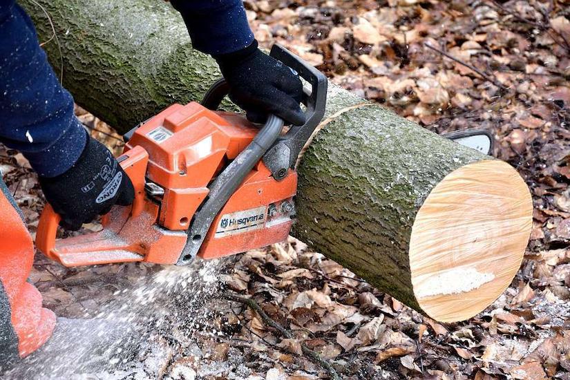 cutting-wood-chainsaw