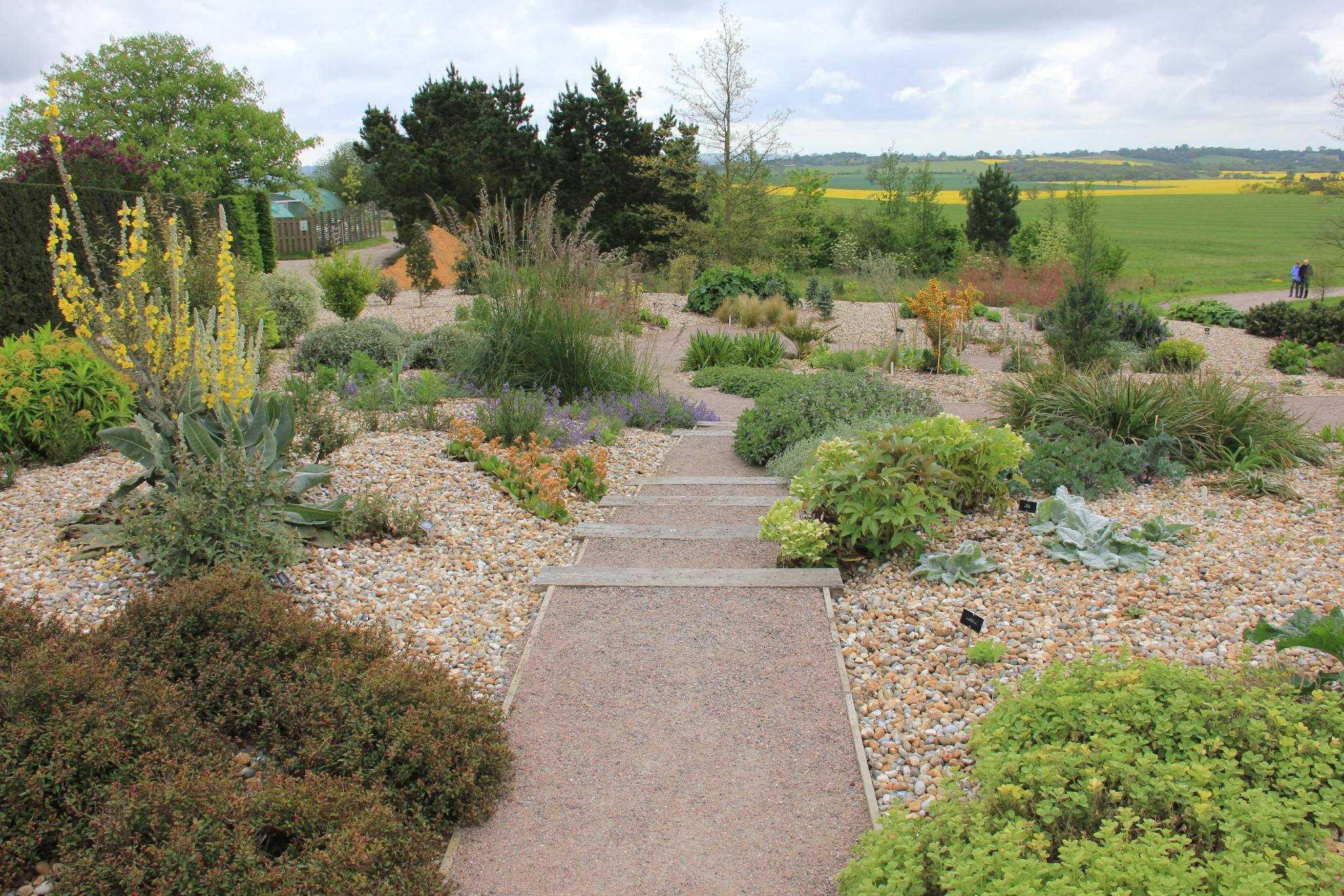 Color Full Garden That Is Drought Tolerant