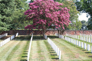 NALP's Renewal & Remembrance 2017 event at Arlington National Cemetery in Washington, D.C