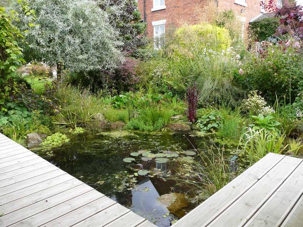 best uk amateur garden features water garden
