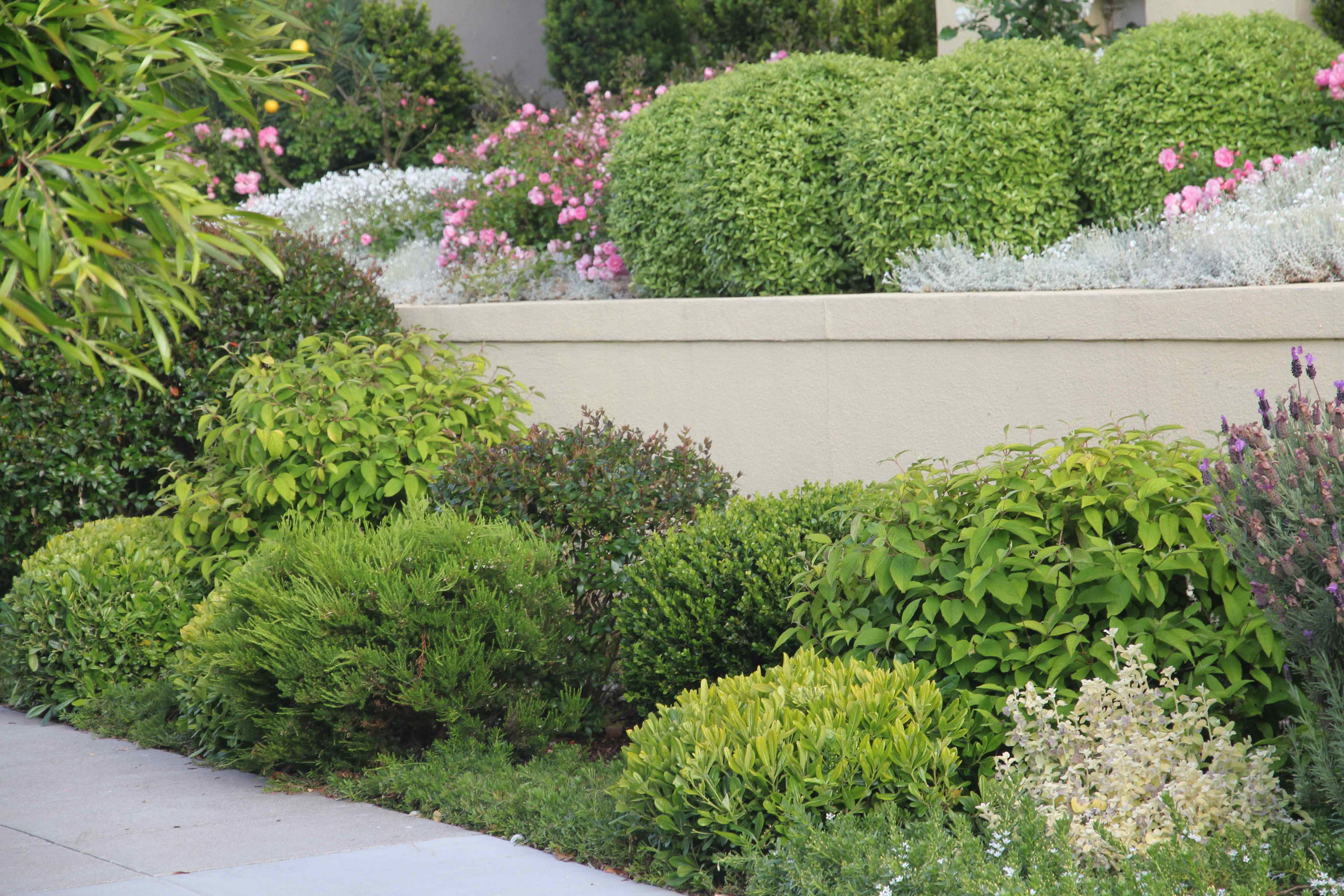gardenista's best curb appeal winner