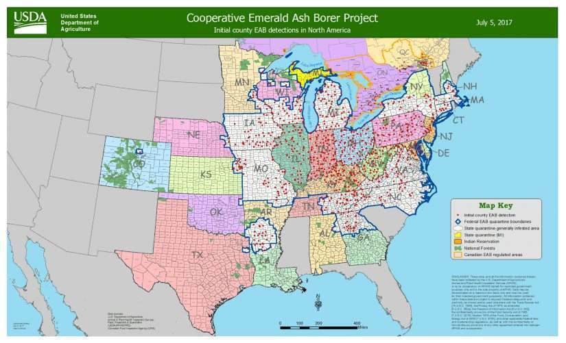 july map of emerald ash borers