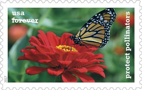 butterfly on top of flower on usps forever stamp