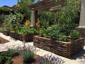 raised planter boxes for crops