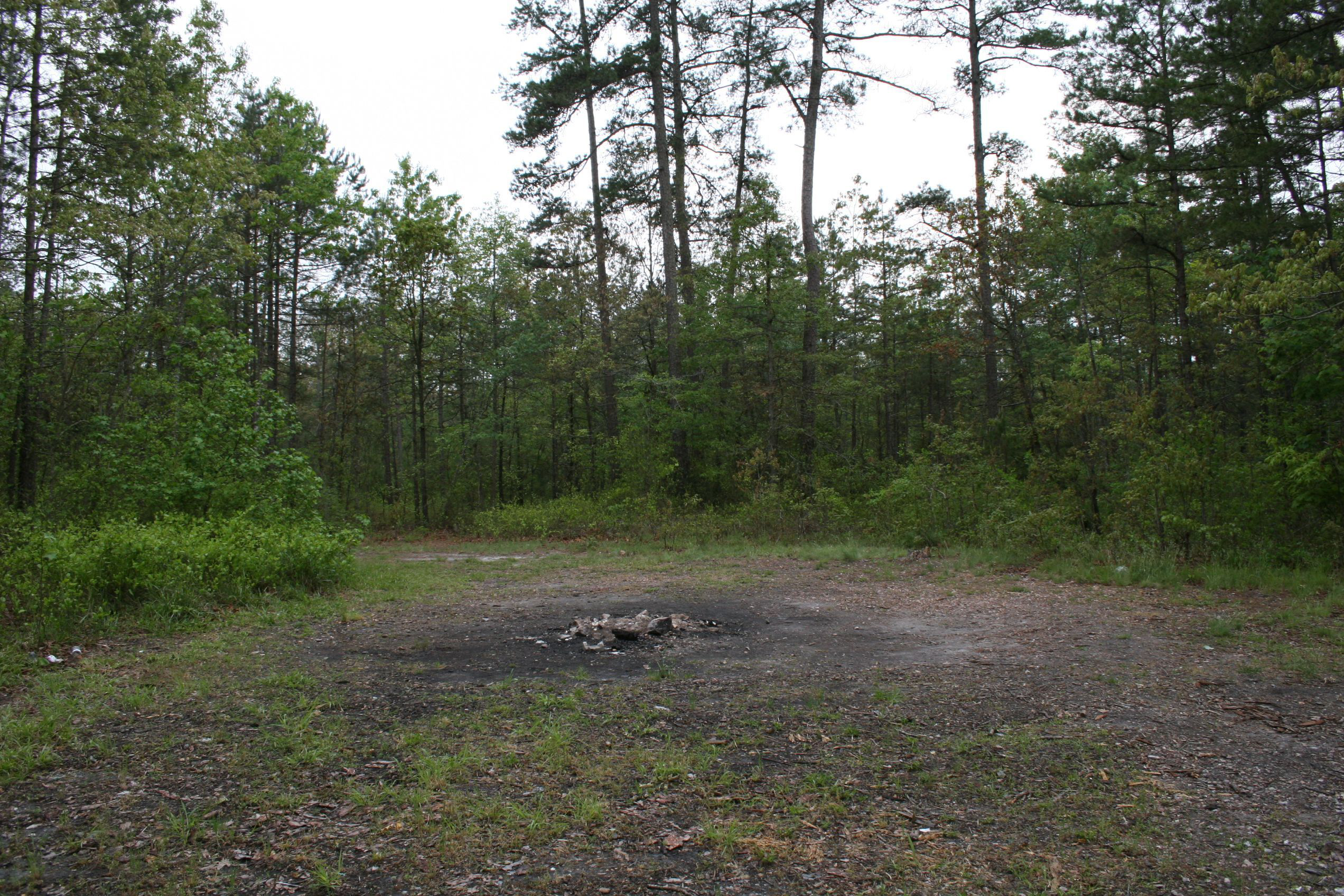 burned out fire pit in woods