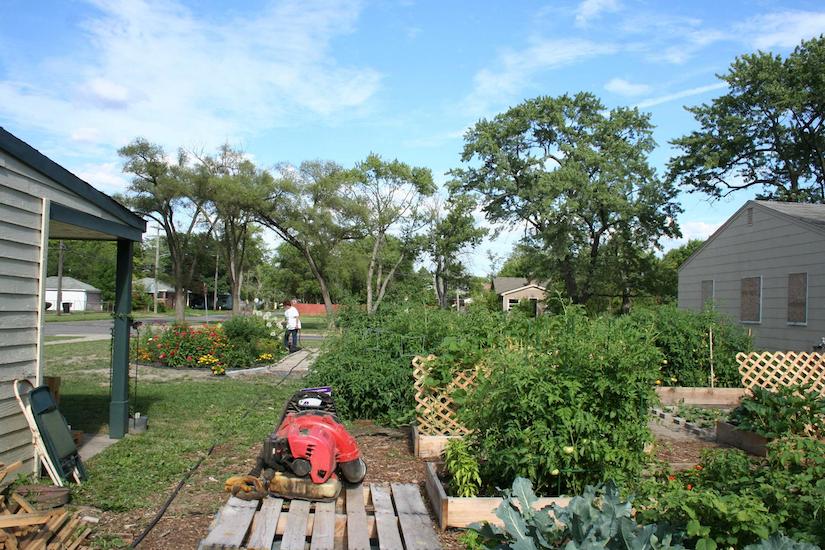project evergreen garden
