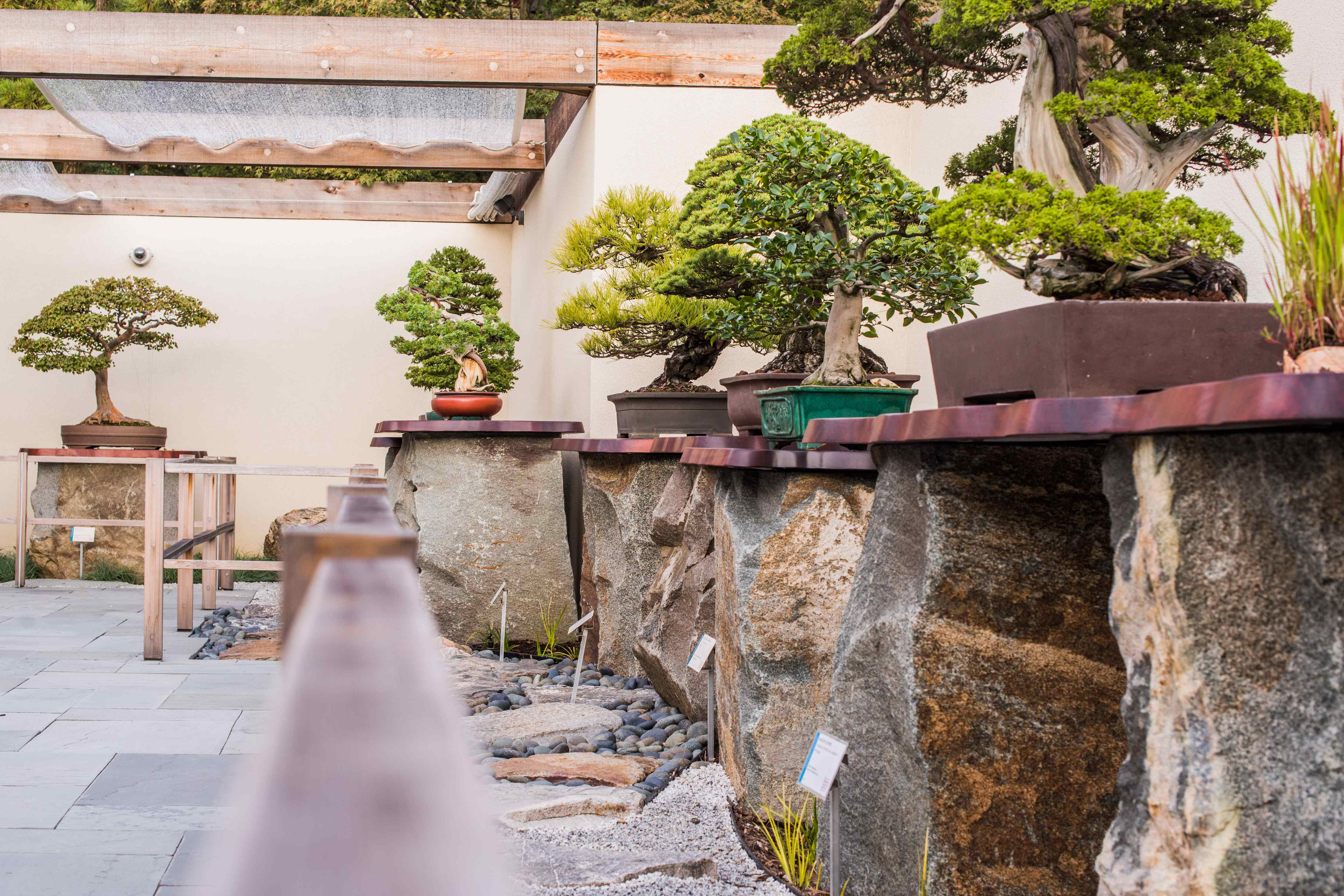Japanese Pavilion at the National Bonsai & Penjing Museum