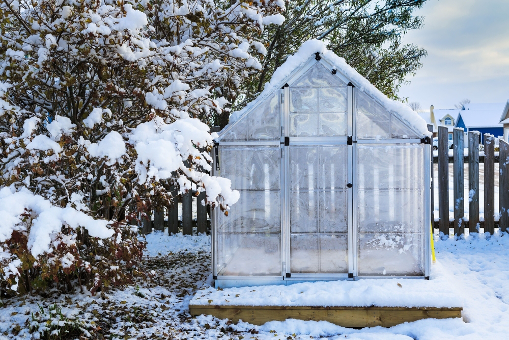 How to keep a greenhouse warm in the winter - What temperature to keep house in winter ...