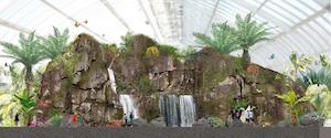 inside waterfall of butterfly palladium