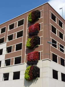 live wall outside building
