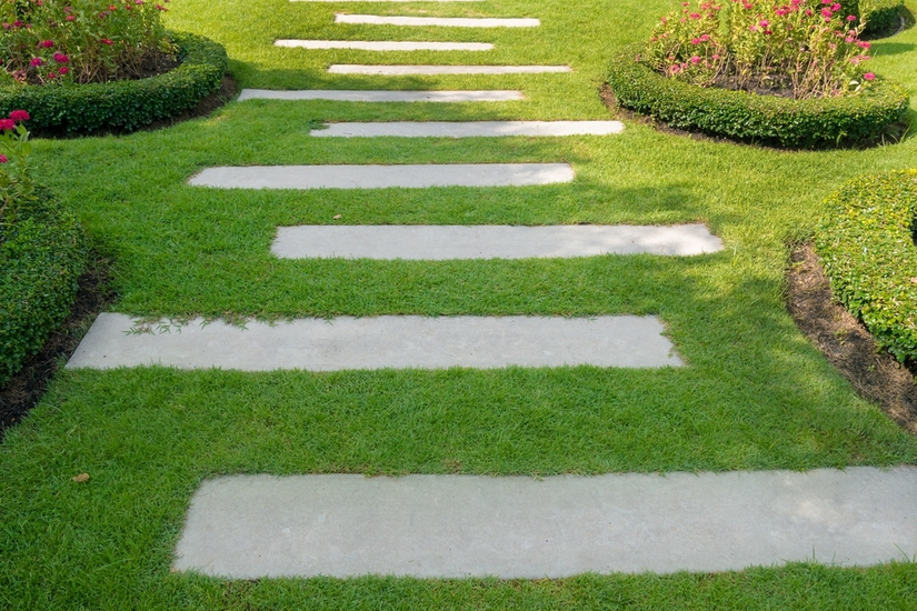 When You Take A Look At Pavers In Landscape Sometimes May See There Are Plants Present The Gaps Between Them