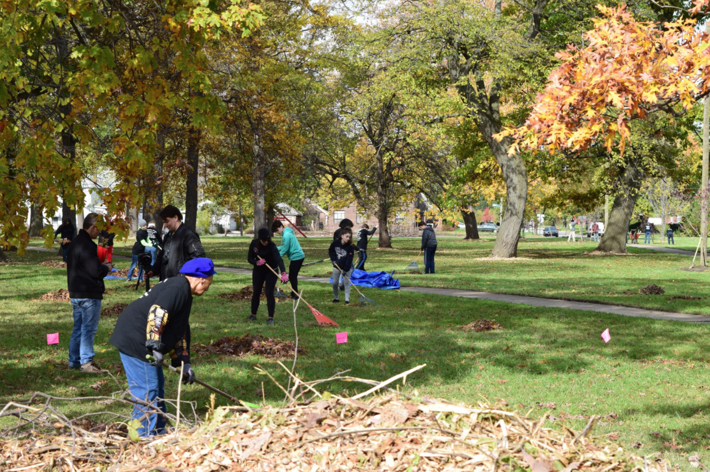Member from Project Evergreen cleaning and raking Pingree Park Detroit MI