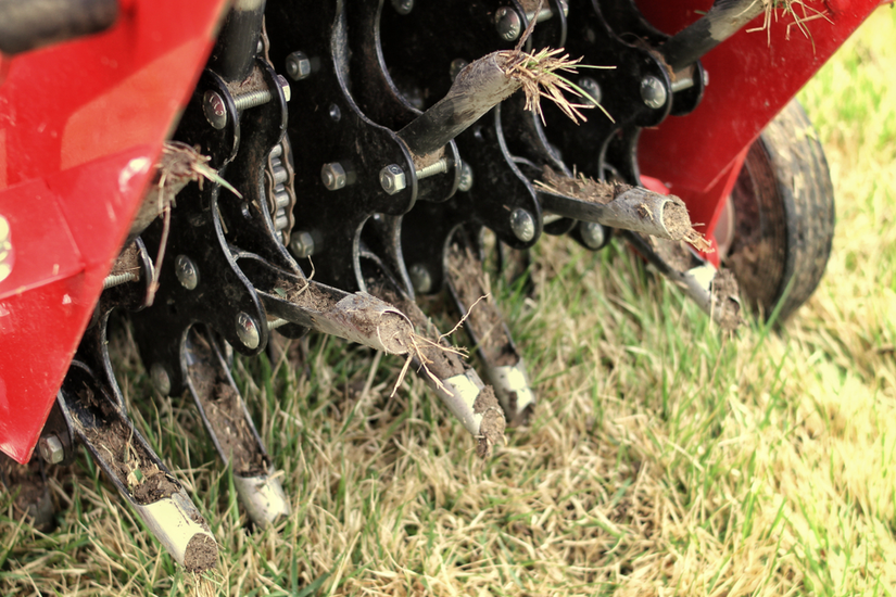 Selling services: overseeding and Aeration