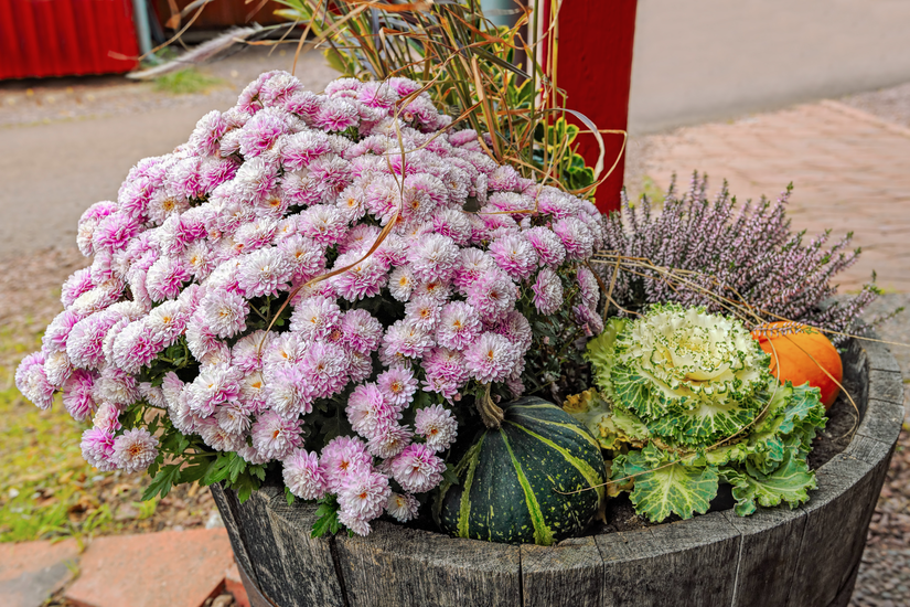 Total Landscape Care & How to create colorful fall container gardens