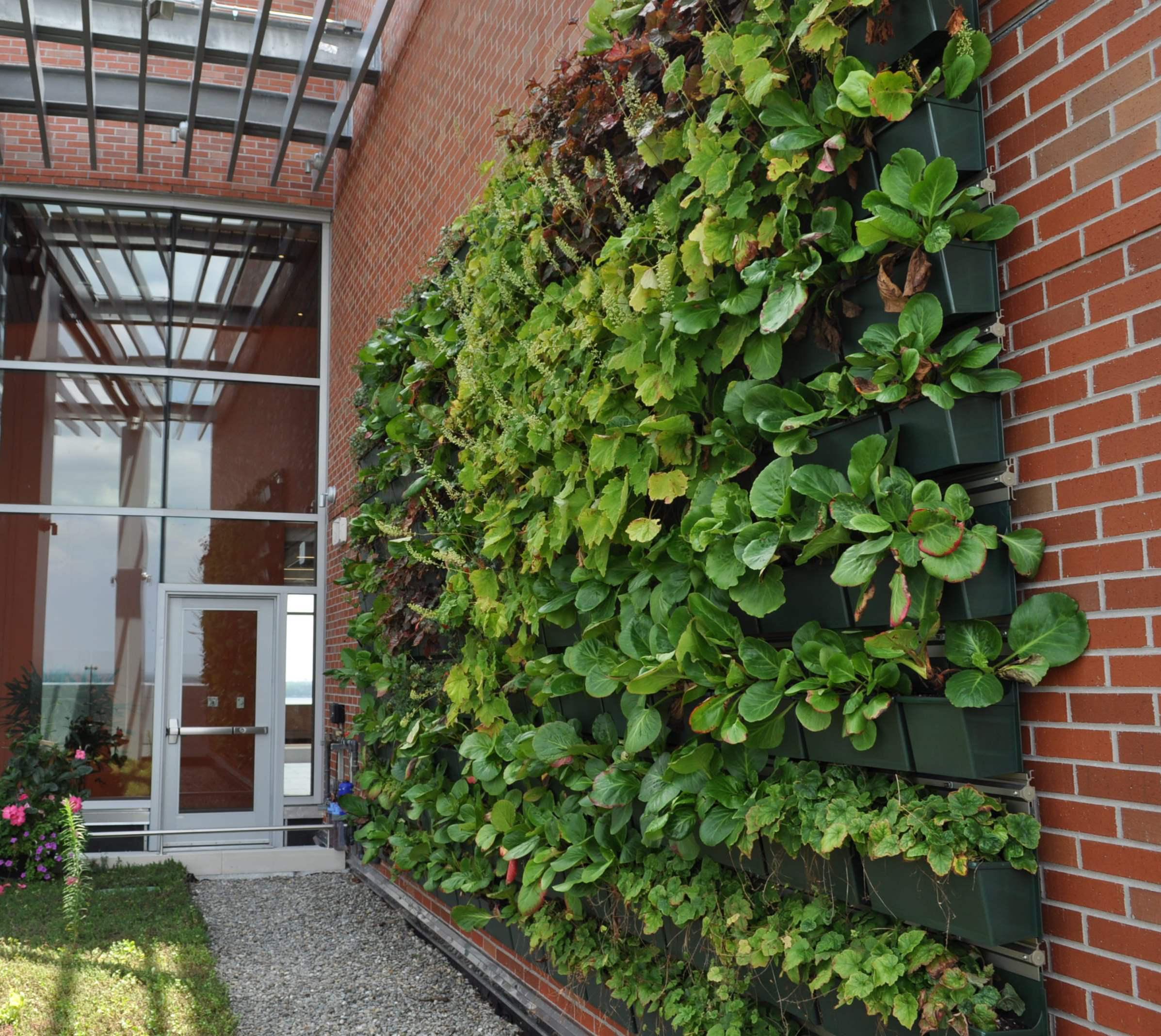 Beautiful Vertical Garden Ideas: Living Green Walls Added To N.J. Hospital
