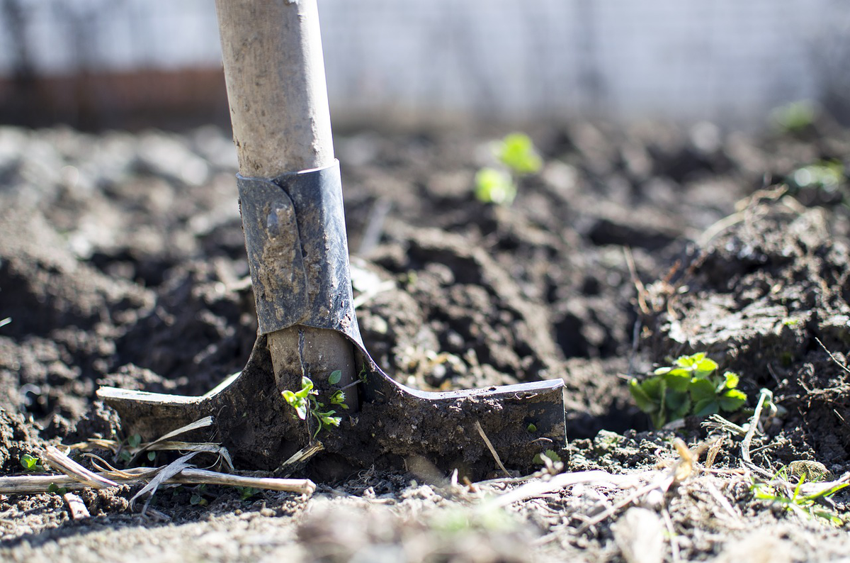 When And How To Prepare Soil For Landscaping Total Landscape Care
