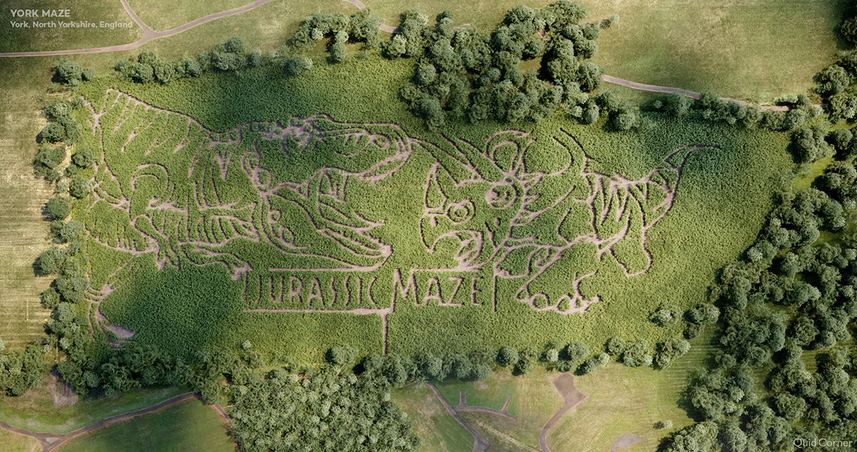 07a_York-Maze