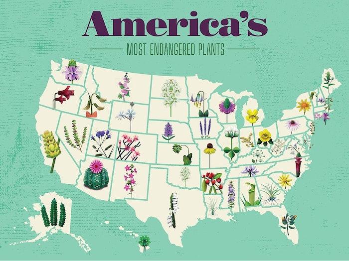 00_Endangered-plants_US_Map40 copy