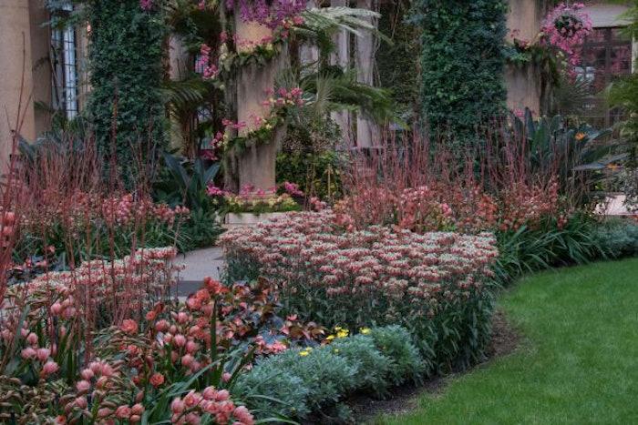 landscaping-plants-yard