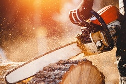 chainsaw-tree-cutting-services