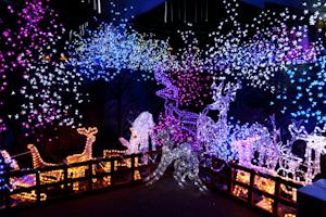 outdoor lighting for winter holiday season