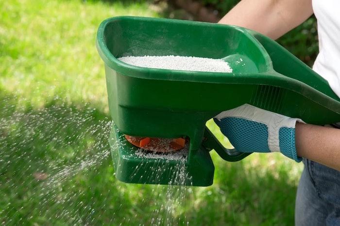 landscaper spreads fertilizer with a handheld garden spreader