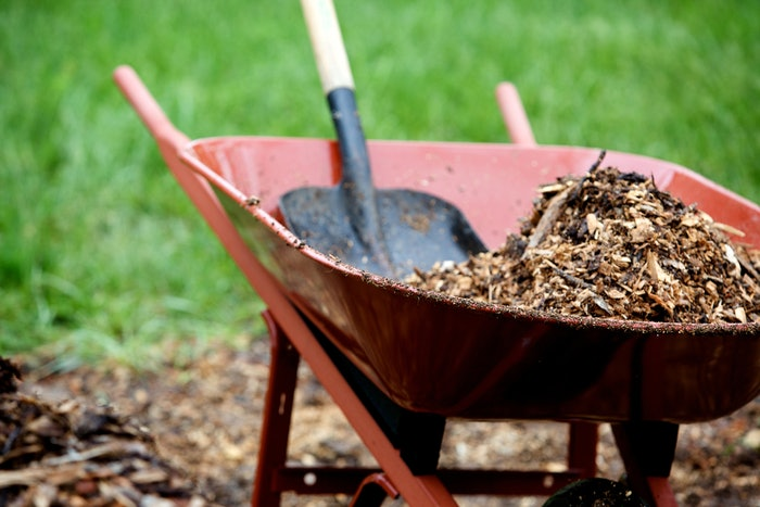 red wheelbarrow with pile of mulch in it and shovel