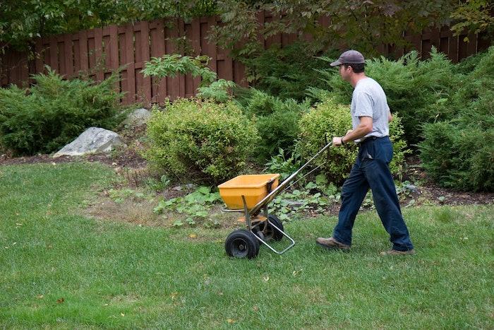 landscaping professional seeding a yard