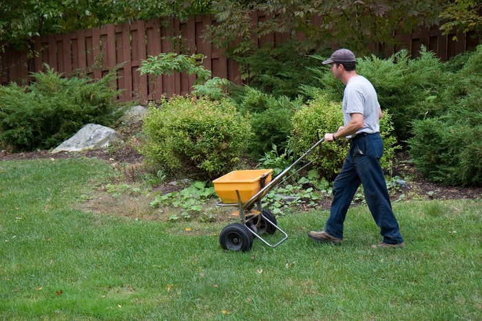 lawn care professional seeding yard