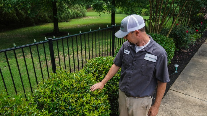 lawn-care professional tending to bushes